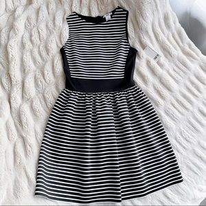 Bar III Black/White Striped Fit and Flare Dress